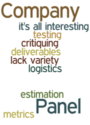 Company Panel lack variety testing metrics critiquing logistics estimation deliverables it's all interesting